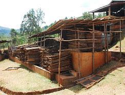 Ethiopia Yirgacheffe natural process Konga Zone