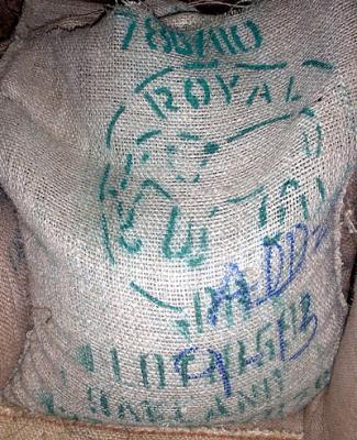 Kenya Guama Peaberry, Baragwi Farmers Cooperative