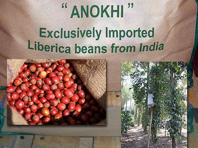 India Anokhi Liberica Coffee ***NEW CROP***