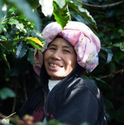 Java Mountain Pangalengen Womens' Cooperative washed