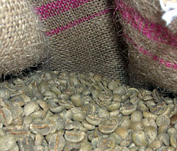 Indonesia Nusantara Decaf SWP